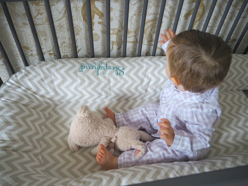 The Sleepyhead Baby Pod - A Review | jessicarhoades.co.uk